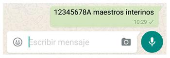 ejemplo-whatsapp